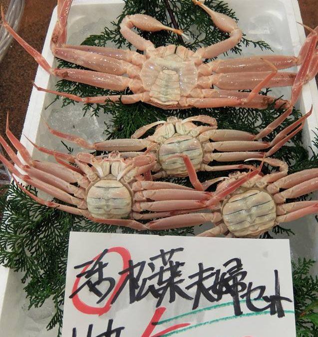 2016/11/25 12:00〜売り場開催!