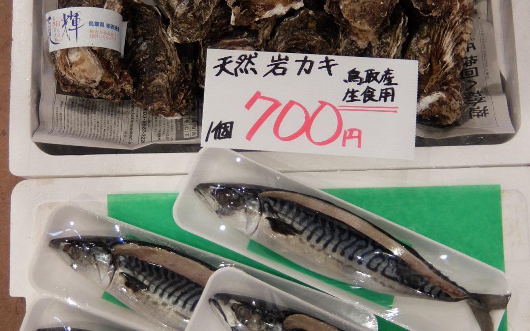 2017年6月16日(金) 鳥取ブランド牡蠣「夏輝」「白いか」など山陰の夏の旬をお届けします。