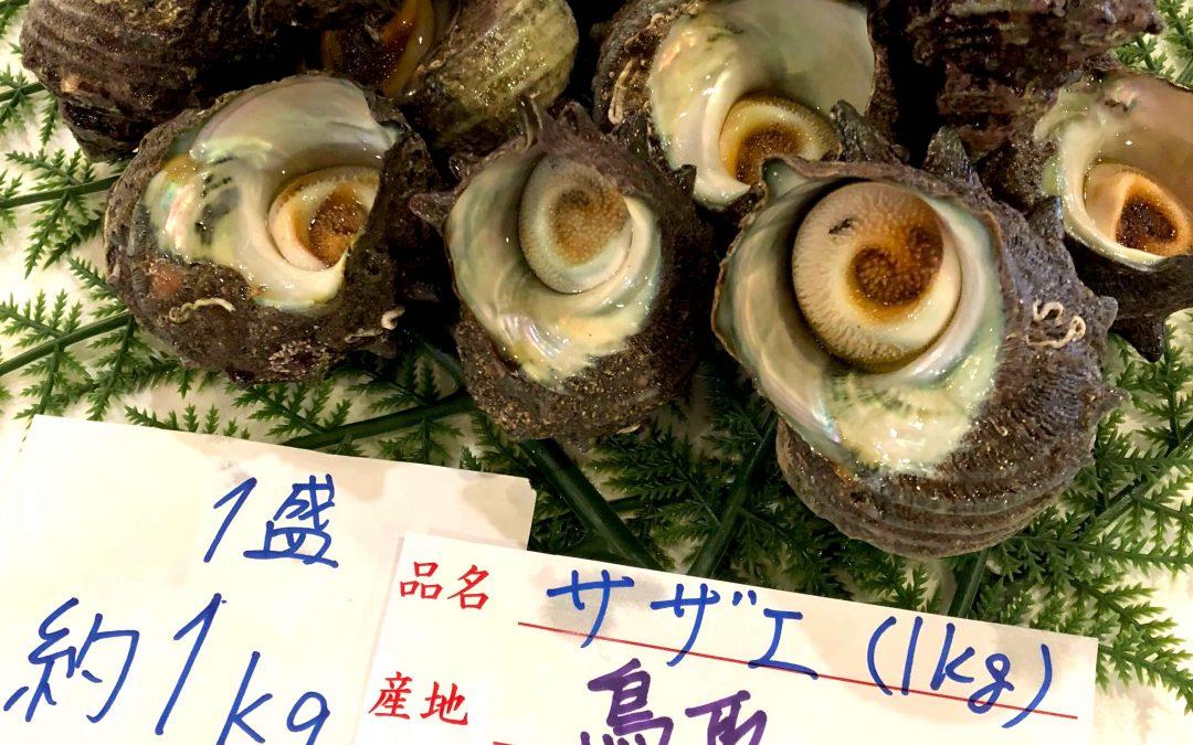 5/18(金)鳥取賀露港海鮮市場 かろいち:サザエ 1kg 、 ハタハタ 8尾 など