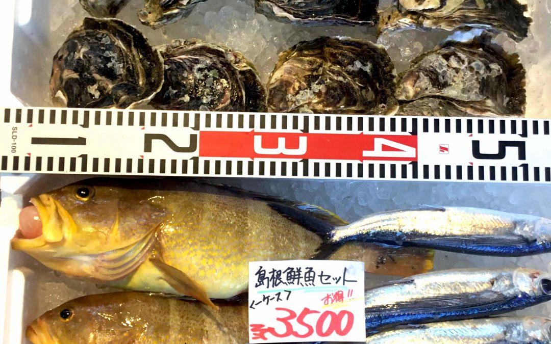 5/22(火)島根松江 海の幸 魚心:鮮魚セット 、岩ガキ、トビウオの卵などが登場