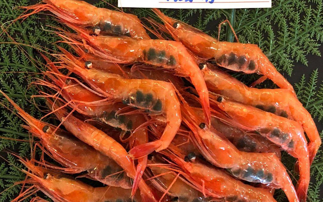 9/14(金)鳥取賀露港海鮮市場かろいち:甘エビ、マトウダイなどを販売