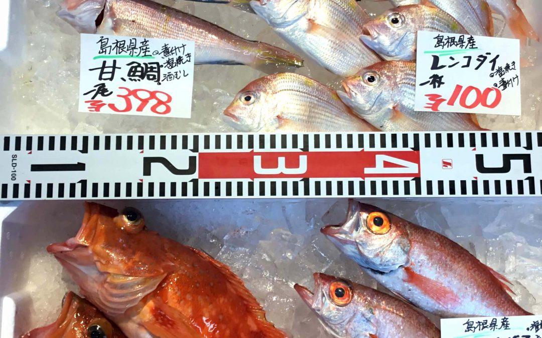 10/23(火) 島根松江 海の幸 魚心:アマダイ、のどぐろなど島根の海の幸盛りだくさん!
