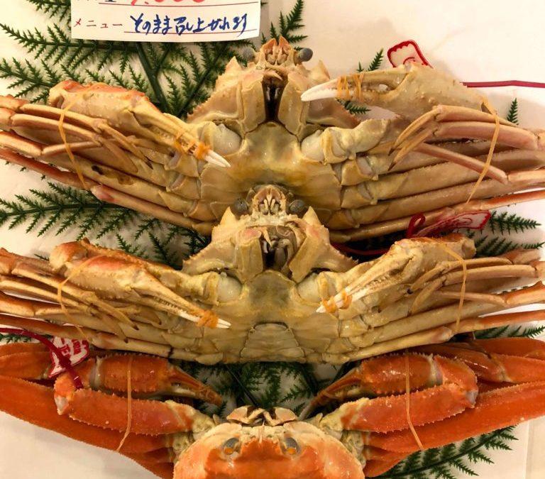 12/3(月) 鳥取賀露港海鮮市場 かろいち:茹で松葉がにや、真アジなどを販売