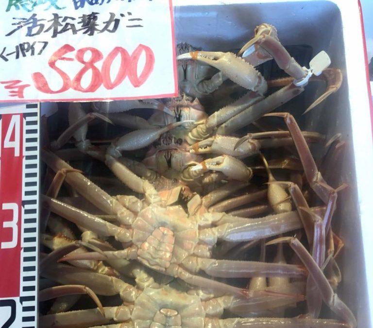 12/5(水)島根松江 海の幸 魚心 :活松葉がにをお得な価格でご提供!
