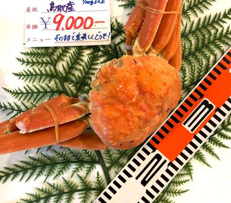 12/7(金)鳥取賀露港海鮮市場 かろいち:モサエビ、茹で松葉がになどを販売