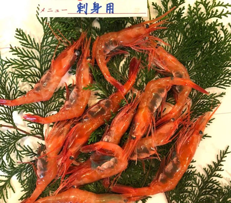 12/21(金) 鳥取賀露港海鮮市場 かろいち:甘エビ、ハマチなど鮮魚揃ってます!
