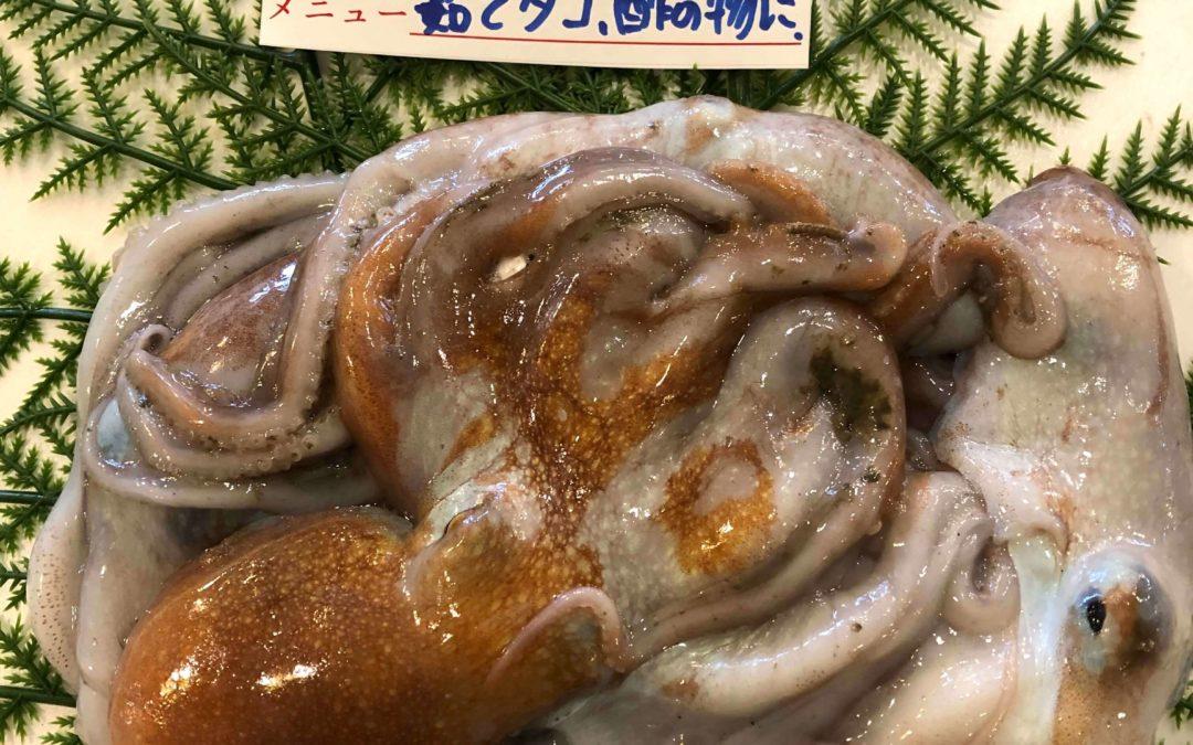 3/8(金) 鳥取賀露港海鮮市場 かろいち:松葉ガニ、手長タコなどを販売