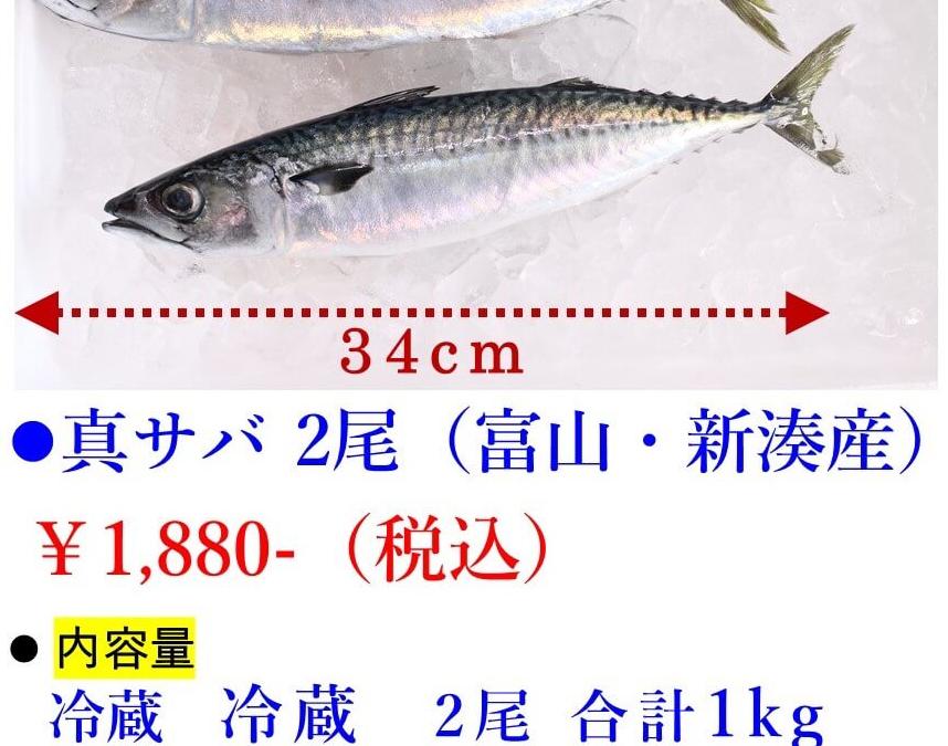 3/25(月)「鳥取港海鮮市場 かろいち」「創業文久元年 富山 奥田屋」