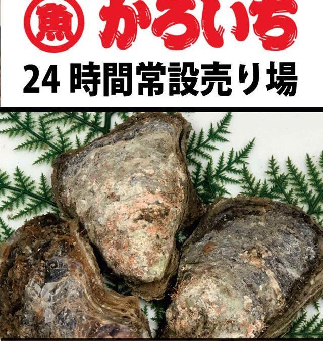 7月17日(水)から岩牡蠣専門売り場を開催!