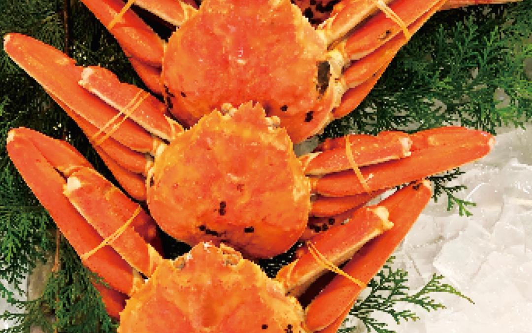 12月6日(金)鳥取港海鮮市場 かろいち:松葉がに、赤カレイなどを販売