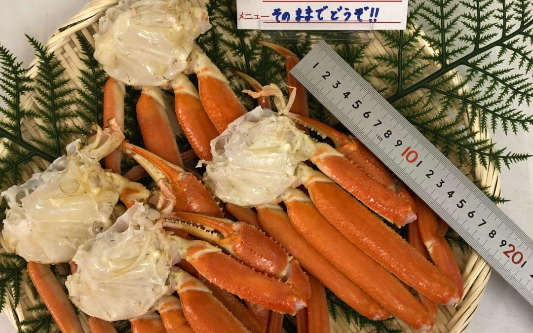 2月28日(金)鳥取港海鮮市場 かろいち:若松葉がに、揃えました!