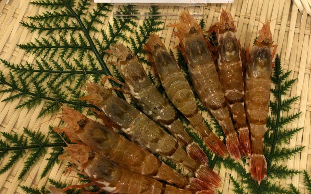 3月30日(月)鳥取港海鮮市場 かろいち:モサエビ、干エテカレイなどが登場