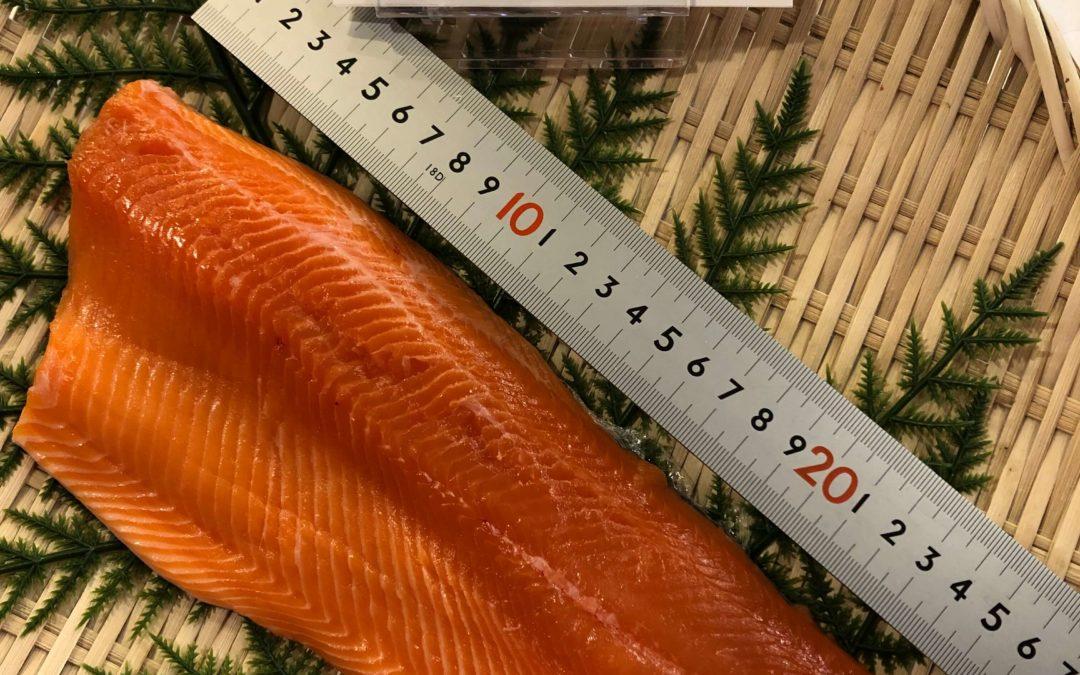 4月3日(金)鳥取港海鮮市場 かろいち:境港サーモン、ホタルイカなどを販売