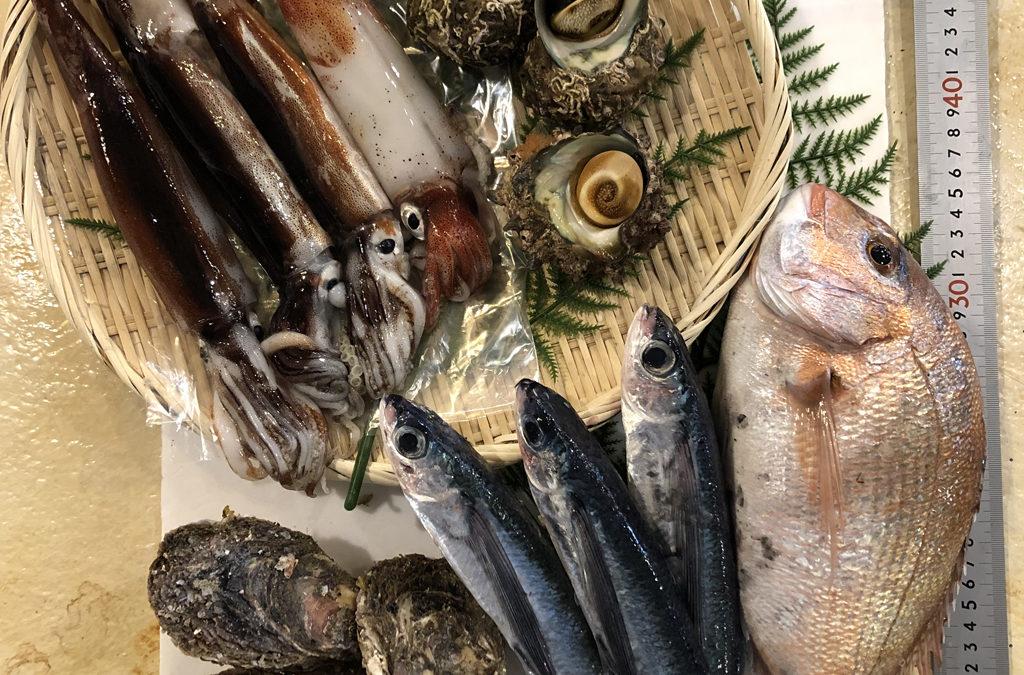 6月1日(月)鳥取港海鮮市場 かろいち:岩ガキ登場!本日も2500円以上は送料無料!