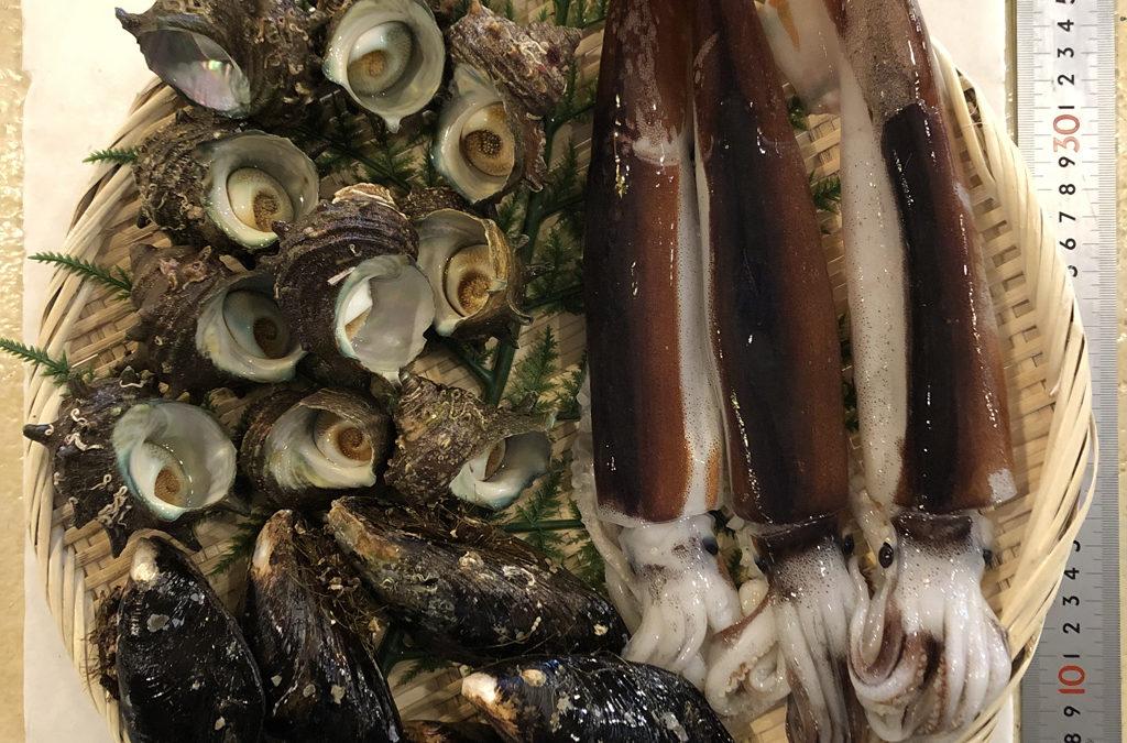 6月19日(金)鳥取港海鮮市場 かろいち:お得な鮮魚セット/干物セットあります!2500円以上購入は送料無料!