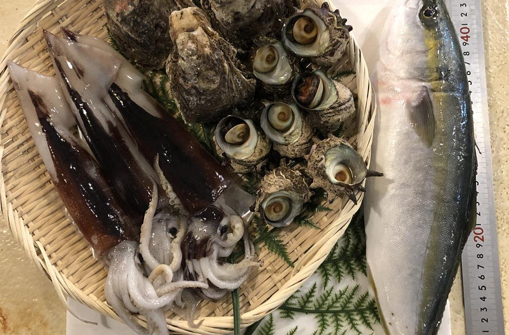 6月26日(金)鳥取港海鮮市場 かろいち:お得な鮮魚セットなどが登場。2500円以上で送料無料。