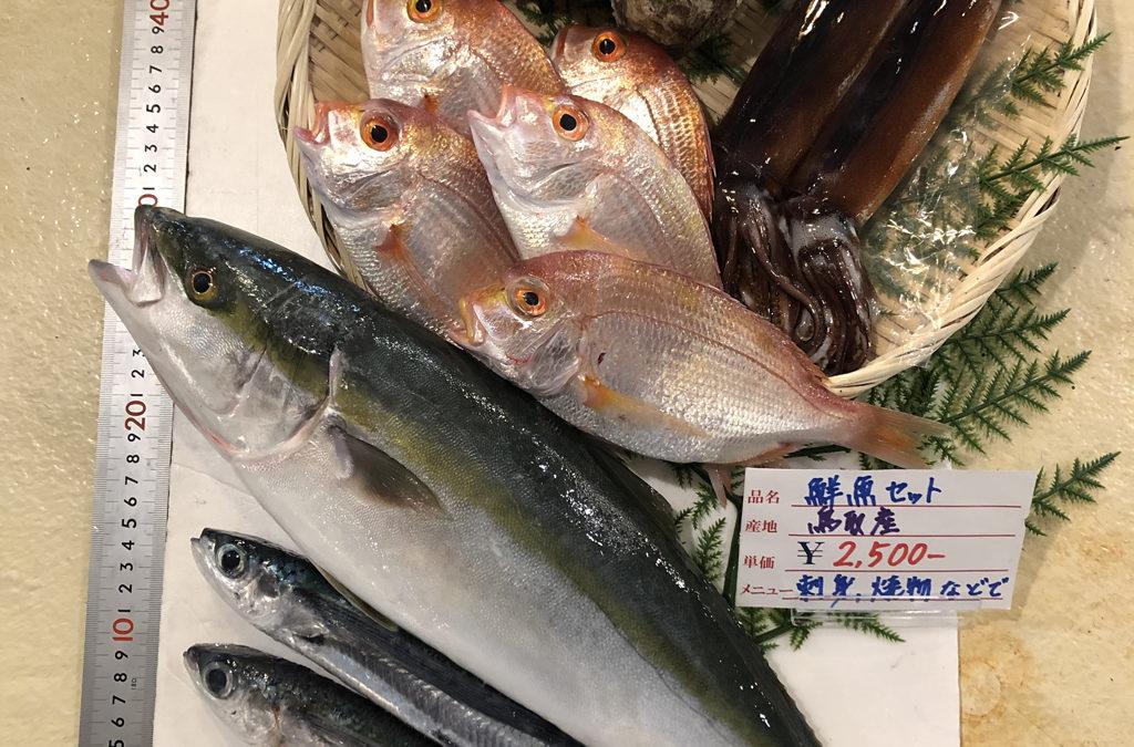 7月6日(月)鳥取港海鮮市場 かろいち:鮮魚セット、岩ガキ&シロイカセットなどを販売。2500円以上送料無料!