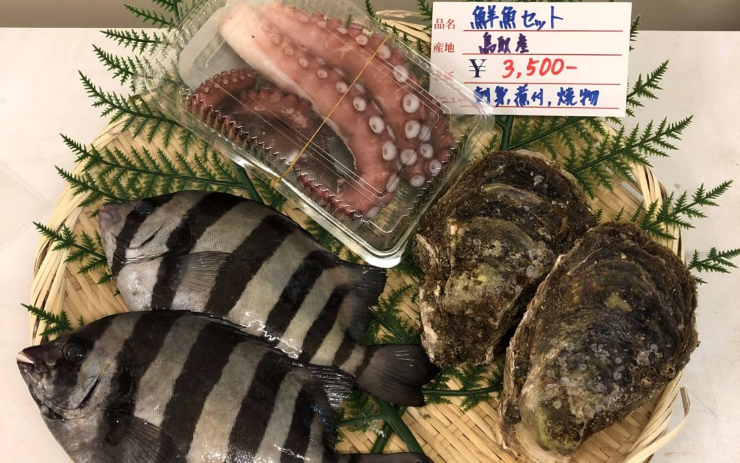 8月17日(月)鳥取港海鮮市場 かろいち:お得なセット多数ご用意!2500円以上で送料無料!