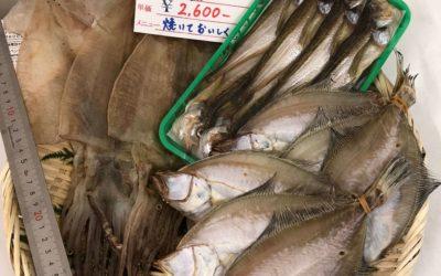 8月28日(金)鳥取港海鮮市場 かろいち:鮮魚セットなどを販売。送料無料キャンペーンは今月で終了!