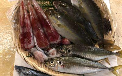 8月31日(金)鳥取港海鮮市場 かろいち:2500円以上で送料無料は本日ラスト!鮮魚セットなどあります。
