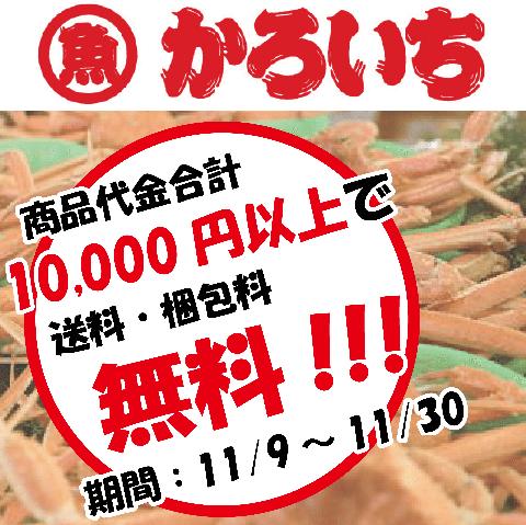 <商品代金10,000円以購入で送料・梱包料無料は本日ラスト!!>