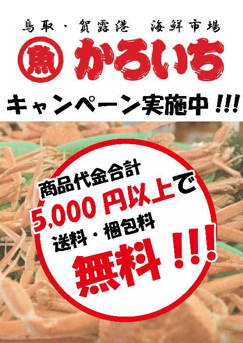 【2月12日(金)開催のお知らせ】