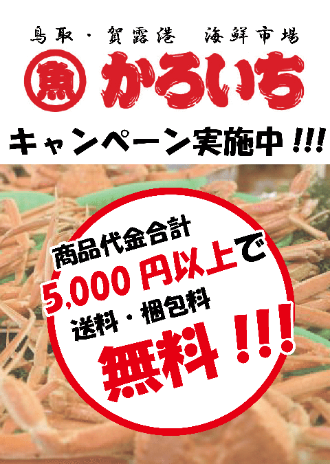 【2月5日(金)開催のお知らせ】