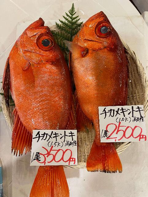 【7月2日(金)開催のお知らせ】